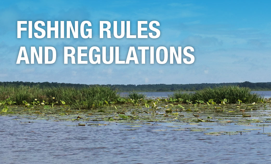 Alligator program for Fishing license requirements