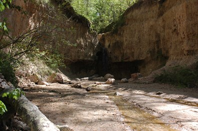 MDWFP - Clark Creek