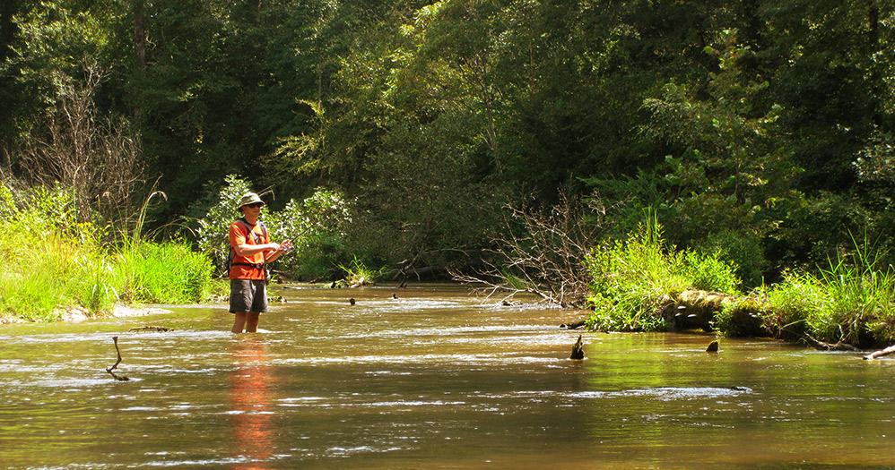 Mdwfp Fishing Streams In The Fall