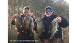 Pickwick Smallies Dec 2017.jpg