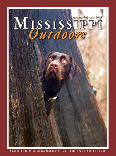 If You Have A Hunting Or Fishing License Can Also Subscribe Online Through Our And Permit Purchasing Page Mississippi