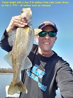 Knight Walleye Bruce Feb 2.jpg