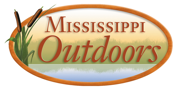 Ms Outdoors